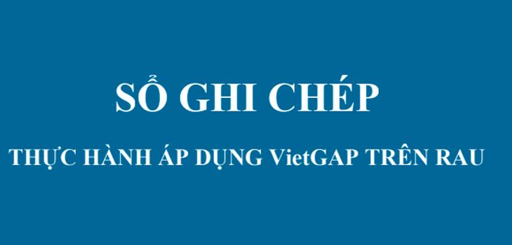 thuc-hanh-viet-gap-tren-rau