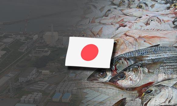 Tài Liệu An Toàn Thực Phẩm Của Nhật Bản Chọn Lọc