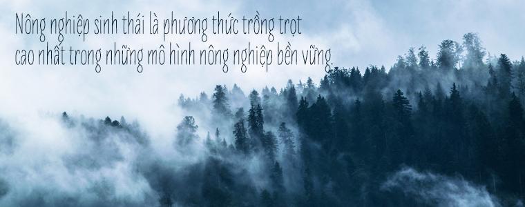 He-thong-vuon-rung-sinh-thai