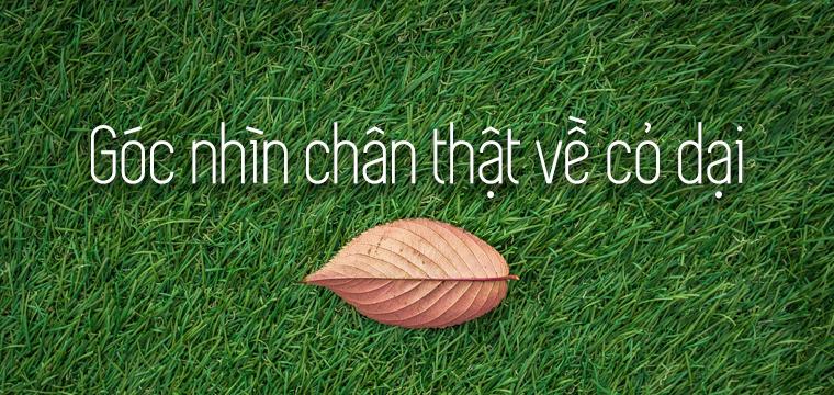 Goc-nhin-chan-that-ve co-dai