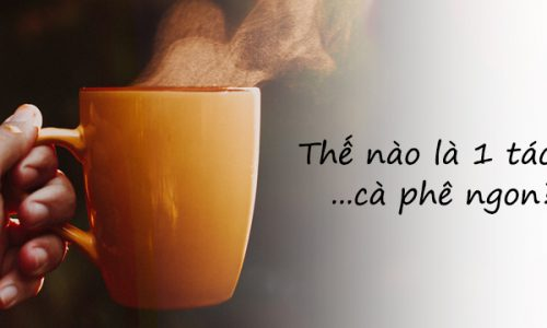 The-nao-la-ca-phe-ngon